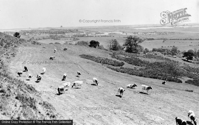 Photo of Lympne, The Marshes c.1955