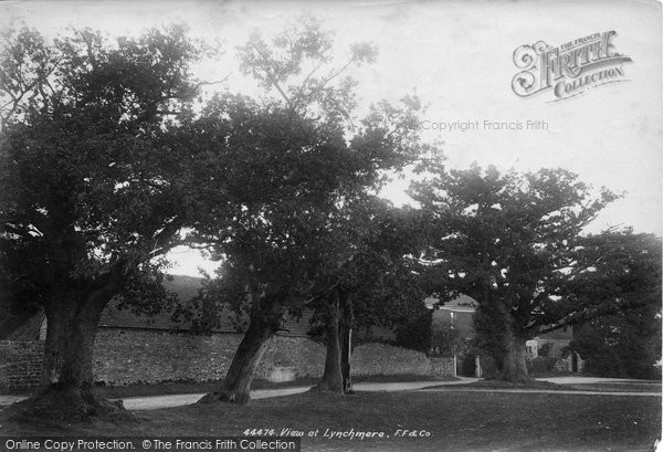 Photo of Lynchmere, Old Oaks 1899