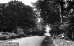 Bournemouth Road 1906, Lyndhurst