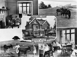 Ormonde House Private Hotel c.1955, Lyndhurst