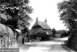 Lyndhurst, Shrubs Hill Cottage 1906