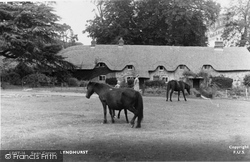 Swan Corner c.1955, Lyndhurst