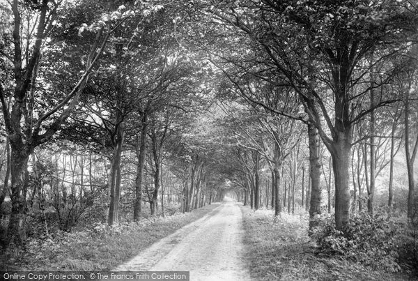 Photo of Lytham, Green Drive 1894