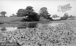 Madeley, The Village Pond c.1955