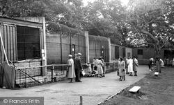 Maidstone, Zoo Park c.1955