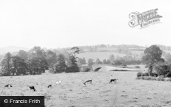Mapleton, View From Okeover Arms c.1955