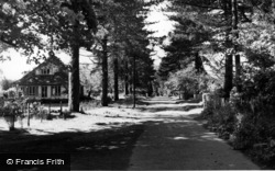Maresfield, The Avenue c.1950