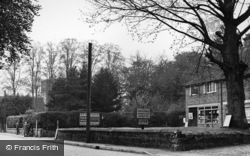 Maresfield, View Showing Hammonds c.1950