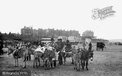 Margate, Donkeys On The Sands 1906