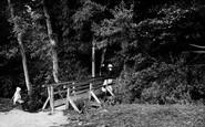 Marlow, Quarry Woods And Rustic Bridge 1890