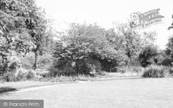 Martock, Hurst Manor Youth Hostel, The Garden c.1955