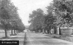 Masham, The Avenue 1908