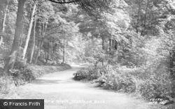 Lovers' Walk c.1955, Matlock Bath
