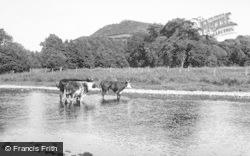Meifod, River Vyrnwy c.1955