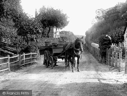 Melplash, Horse And Cart 1907