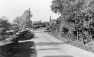 Example photo of Merle Common