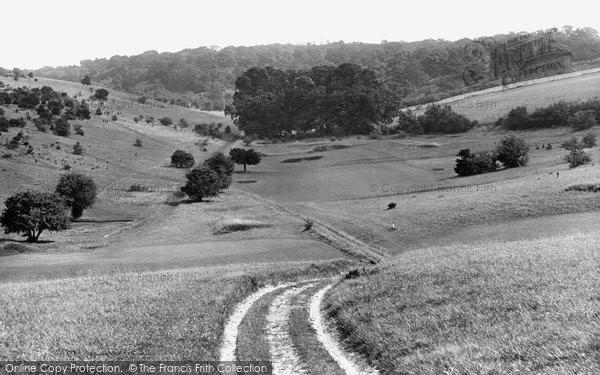 Merrow, Downs, The Woods 1927