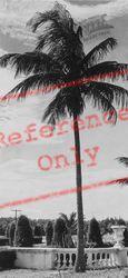 Evening Sky c.1930, Miami