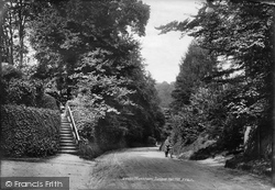 Juniper Hall Hill 1906, Mickleham