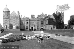 Foxhounds Outside Danby Hall 1906, Middleham
