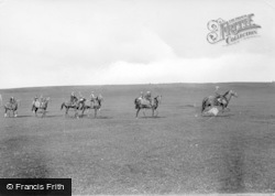Middleham, Race Horses On Moor 1914