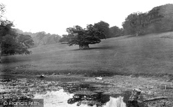 Midhurst, Cowdray Park, Queen Elizabeth's Oak 1921