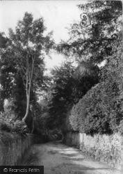 Midhurst, June Lane 1907