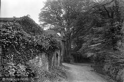 Midhurst, June Lane 1921