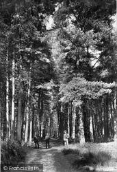 Midhurst, King Edward's Sanatorium, Half Mile Walk 1907