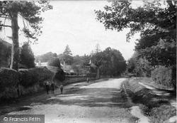 Midhurst, Petersfield Road 1907