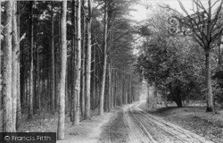 Midhurst, Road To Sanatorium 1906