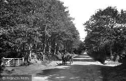 Midhurst, Road To The Sanatorium 1907