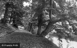 Midhurst, St Ann's Hill 1898