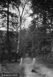 Midhurst, The Severalls 1921