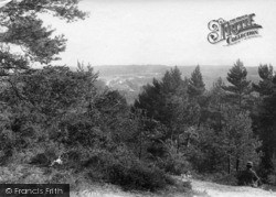 Midhurst, View From The Common 1907