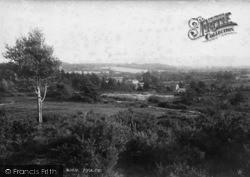 Midhurst, View On The Common 1898