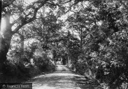 Midhurst, Woolbeding Lane 1898