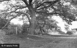 Milford, General View c.1955