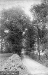 Milford, Lane To Eashing 1907