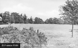 Milford, Milford Common And Cricket Pitch c.1955