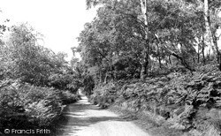 Milford, Sherbrook Valley c.1955