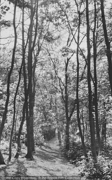 Photo of Mill Hill, Moat Mount c.1955