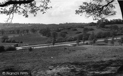 Mill Hill, Scratch Wood From Moat Mount c.1955