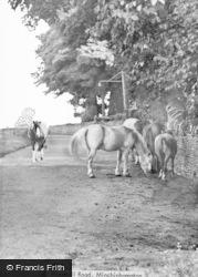 Minchinhampton, Windmill Road c.1950