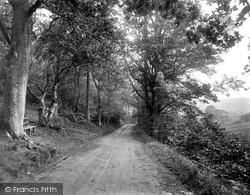 Hopcott Lane 1919, Minehead