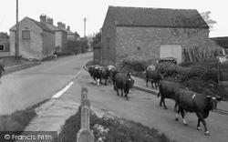 Misterton, The Village 1958