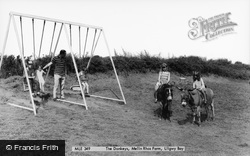 Moelfre, The Donkeys, Melin Rhos Farm c.1965
