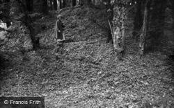 Mold, Leeswood Castle Motte 1952