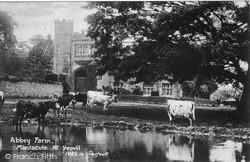 Abbey Farm c.1900, Montacute