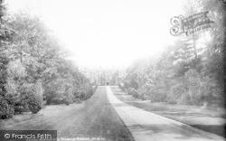 House And Avenue 1900, Montacute